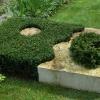 Dekoratyvinių augalų formavimas